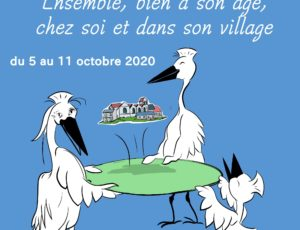 affiche OEUILLY-semainebleue-2020