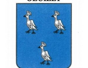 logo Oeuilly
